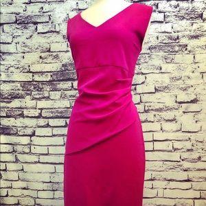 Diane Von Furstenberg Magenta Sexy Sheath Dress